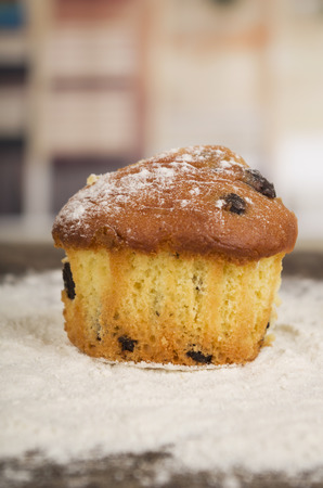 caster: delicious homemade chocolate chip muffin cake dessert cupcake pastry with caster sugar on wooden table closeup