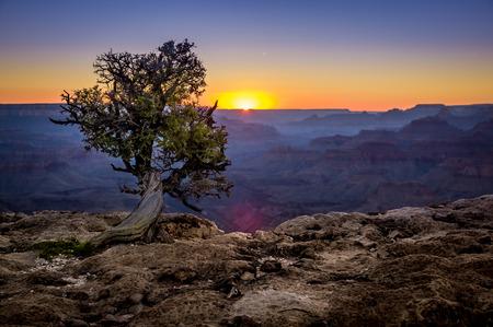 beautiful colorful landscape sunset in grand canyon national park arizona photo