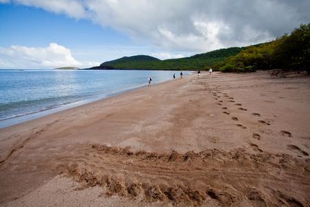 harmless: Beautiful landscape of a beach in the Galapagos Islands, Ecuador
