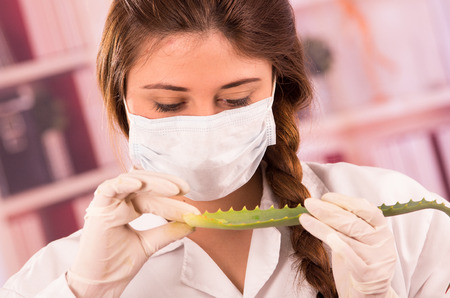 biologist: young female biologist wearing mask experimenting with leaf in lab Stock Photo