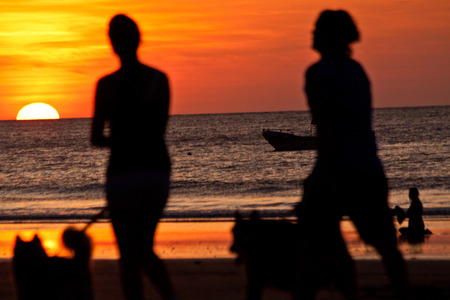 int: Silhouettes of young couple walking their dogs during sunset int he beach, Manabi, Ecuador. Selective focus
