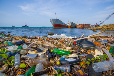 poison sea transport: COLON, PANAMA - APRIL 15, 2015: Waste and pollution washing on the shores of the beach in city of Colon in Panama Stock Photo
