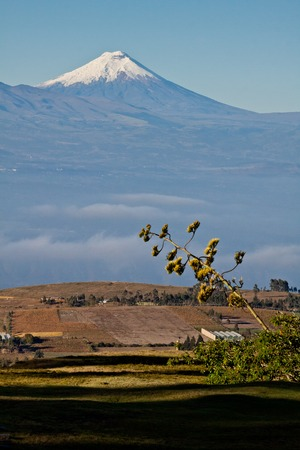 imposing: Imposing Cotopaxi peak in Ecuador, of the highest active volcanoes in the world Stock Photo