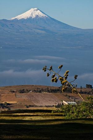 stratovolcano: Outstanding Cotopaxi volcano in the andean region, Ecuador Stock Photo