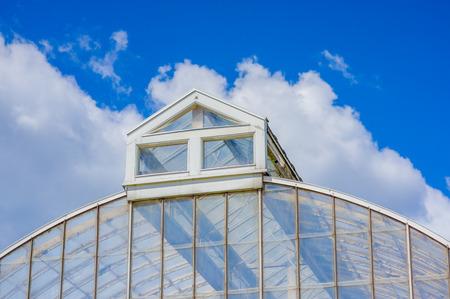 gothenburg: GOTHENBURG, SWEDEN - JUNE 21, 20015: The palm greenhouse in Tradgardsforeningen, the Garden Society park, Gothenburg city downtown