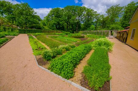 gunnebo: GOTHENBURG, SWEDEN - JUNE 19, 2015: Orchard in Gunnebo House, beautiful and well preserved chateau built in the 18th century Editorial