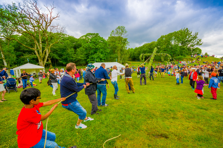maypole: GOTHENBURG, SWEDEN - JUNE 19, 2015: Unknown people raising the maypole for the traditional Midsummer celebration in Gunnebo Castle Editorial
