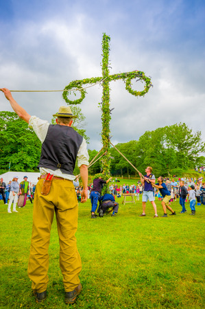 maypole: GOTHENBURG, SWEDEN - JUNE 19, 2015: Volunteers raising the maypole for the Midsummer celebration in Gunnebo Castle Editorial