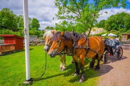 gunnebo: GOTHENBURG, SWEDEN - JUNE 19, 2015: Traditional horse carriage in Gunnebo House, beautiful and well preserved chateau built in the 18th century