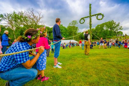midsummer pole: GOTHENBURG, SWEDEN - JUNE 19, 2015: Volunteers raising the maypole for the Midsummer celebration in Gunnebo Castle Editorial
