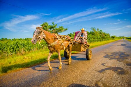 cart road: CENTRAL ROAD, CUBA - SEPTEMBER 06, 2015: Horse and a cart on a road in rural, Cuba.