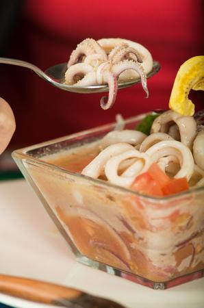 ecuadorian: Close up shot of delicious calamari ceviche, typical ecuadorian plate