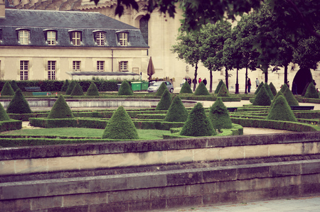 cone shaped: Paris, France June 1, 2015: Park area with cone shaped trees and an old building in the background.