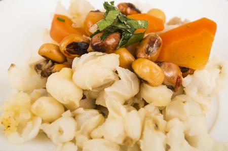 ecuadorian: Traditional ecuadorian plate of pork hornado, elegant presentation on white plate, catering concept. Stock Photo