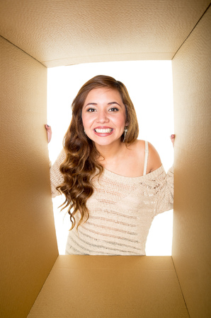 appears: Girl with light brown hair smiling and appears inside a cardboard box, white background