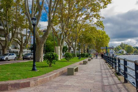 tigre: TIGRE, ARGENTINA - MAY 02, 2016: nice view of some trees in the middle of the sidewalk next to the river in front of some buildings.