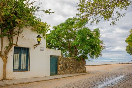 corner of house: COLONIA DEL SACRAMENTO, URUGUAY - MAY 04, 2016: big tree in the garden of an ancient corner house close to the beach.