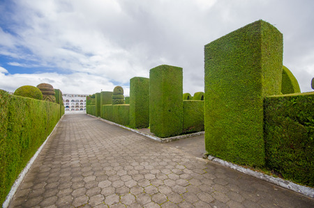 topiary: TULCAN, ECUADOR - JULY 3, 2016: the garden of the cemetery is very famous because of its topiary. Editorial