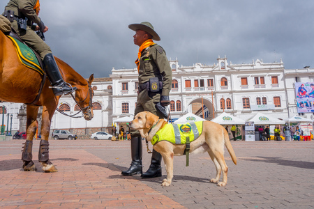 duty belt: PASTO, COLOMBIA - JULY 3, 2016: unidentified policeman standing on the central square with a policedog.