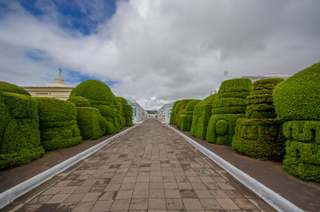 topiary: TULCAN, ECUADOR - JULY 3, 2016: topiary sculptures on the sides of the path close to some vertical graves.