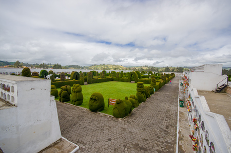 topiary: TULCAN, ECUADOR - JULY 3, 2016: overview of the topiary garden located in the cemetery. Editorial