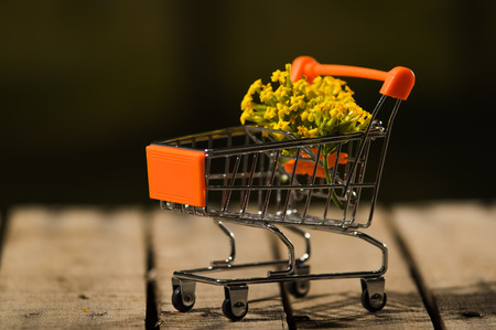 Miniature shopping trolley sitting on wooden surface with bouquet of yellow flowers inside it, magicians concept. Stock Photo