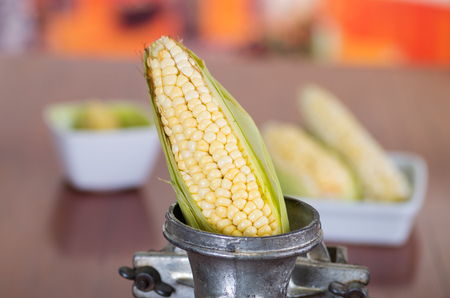A perfect corn inside of a Mill pretending to be milled