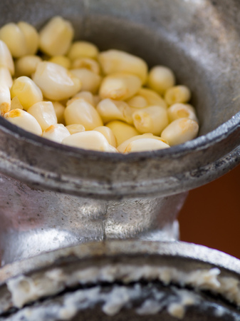A close up of some kernels getting ready to be milled