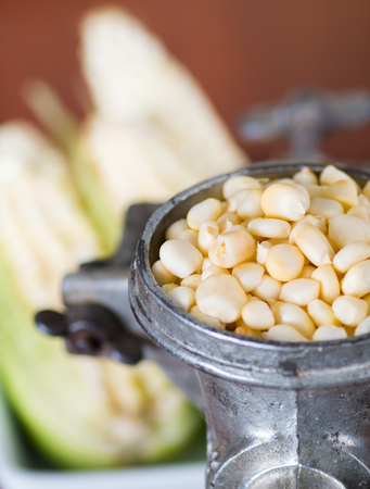A close up from a metalic mill with some corn kernels Stock Photo