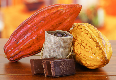 Fresh cocoa pods and beans inside of a small sack and dark pieces of chocolate Stock Photo