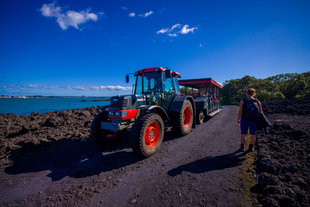 faraway: AUCKLAND, NEW ZEALAND- MAY 12, 2017: Unidentified people on a trip on a truck in a rocky road inside of the volcanic Rangitoto island, in a sunny day