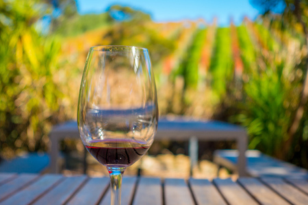 Cup of red wine on vineyard background in waiheke island in auckland, in a beautiful blue sky in summer time Stock Photo