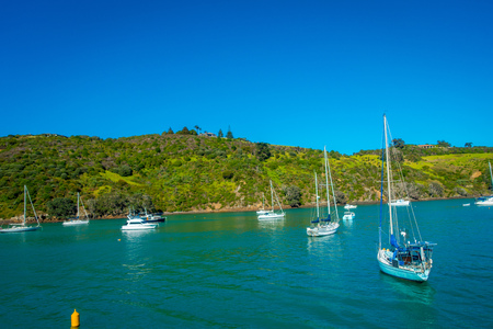 Sailing yachts in Waiheke Island, New Zealand. with a beautiful blue sky and magenta water in a sunny day Stock Photo