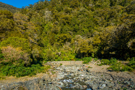 Tropical creek, flowing with glacier water surrounding of vegetation in south island located in new zealand