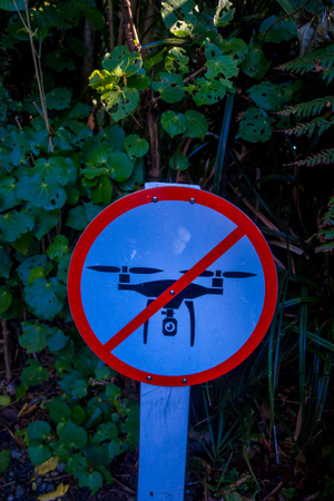 SOUTH ISLAND, NEW ZEALAND- MAY 25, 2017: An informative sign of do not allow use drones danger in a beautiful landscape of Pancake rocks blowholes, in New Zealand