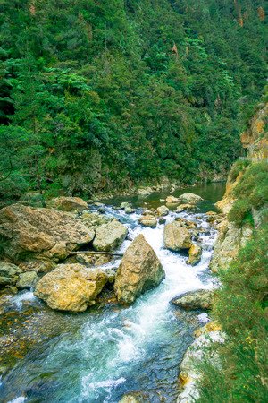 miserable: Calm river runs through the forest at Dickey Flat Campsite Karangahake, New Zealand Stock Photo