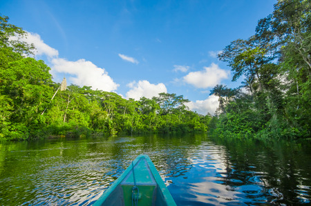 Travelling by boat into the depth of Amazon Jungles in Cuyabeno National Park, Ecuador Stock Photo