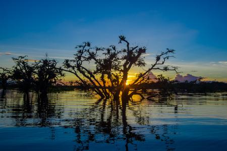 hospedaje: Árboles siluetas contra un cielo naranja al atardecer sobre Laguna Grande en el Parque Nacional Cuyabeno Wildlife Reserve, en Ecuador