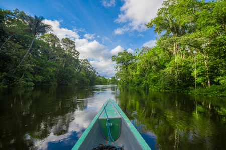 Travelling by boat into the depth of Amazon Jungles in Cuyabeno National Park, Ecuador 스톡 콘텐츠