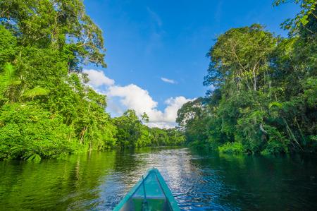 Reizen per boot naar de diepte van Amazon Jungles in Cuyabeno National Park, Ecuador Stockfoto