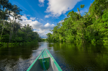 Travelling by boat into the depth of Amazon Jungles in Cuyabeno National Park, Ecuador Stok Fotoğraf