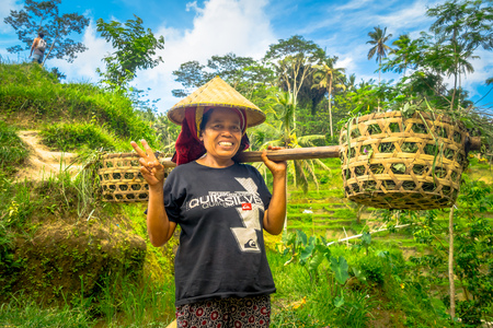 BALI, INDONESIA - APRIL 05, 2017: Women walk in the rice fields wearing a rice hat and holding with her hands a stick with two baskets in each side in Ubud, Bali, Indonesia Editorial