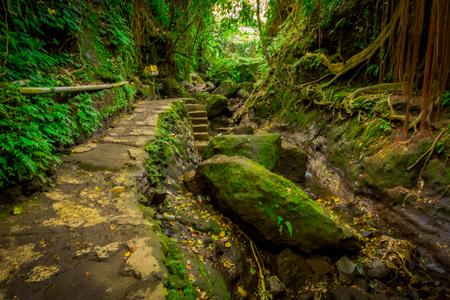 원숭이 숲 성소, 자연 보호구 및 현지 레스토랑, 발리, 인도네시아에서에서 복잡 한 힌두교 사원 안에 돌로 만든 경로
