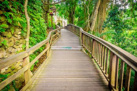 elaborate: Dragon bridge at Ubud Sacred Monkey Forest Sanctuary, a nature reserve and Hindu temple complex in Ubud, Bali, Indonesia Stock Photo