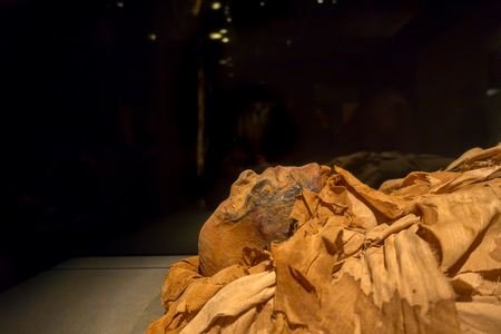 HOUSTON, USA - JANUARY 12, 2017: Amazing mummies wrapped with some rags of the Ancient Egypt in National Museum of Natural Science in Orlando Houston in USA, in a black background Editorial