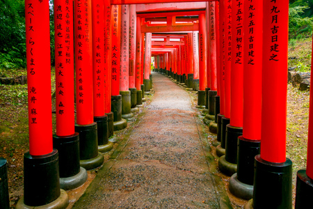 KYOTO, JAPAN - JULY 05, 2017: Red Tori Gate at Fushimi Inari Shrine in Kyoto, Japan