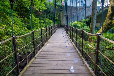 HAKONE, JAPAN - JULY 02, 2017: Beautiful bridge at Hakone open air museum in Japan Editorial