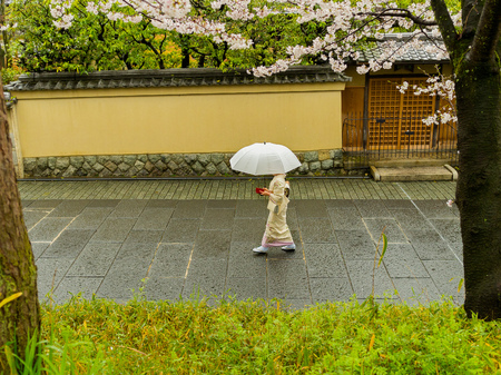 HAKONE, JAPAN - JULY 02, 2017: Unidentified woman with an umbrella walking in the Higashiyama district with cherry blossoms the springtime in Kyoto