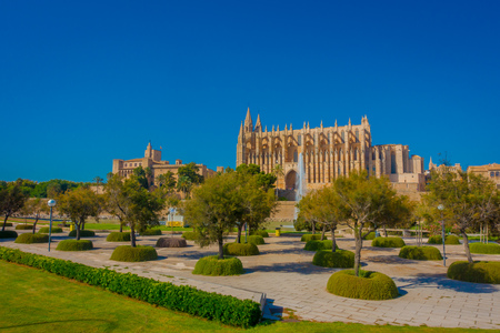 PALMA DE MALLORCA, SPAIN - AUGUST 18 2017: Beautiful view of Cathedral of Santa Maria of Palma La Seu in a gorgeous blue sky, with a fountain and some trees, in Palma de Mallorca, Spain