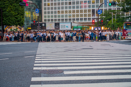 TOKYO, JAPAN JUNE 28 - 2017: Unidentified people waiting the green light for crossing the Shibuya street in Tokyo, Japan. The famous scramble crosswalk is used by over 2.5 million people daily